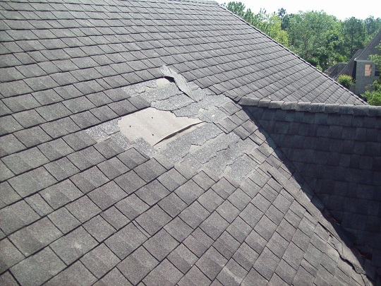 Repair Services On Asphalt Shingles - Roof Shingle Installation And Repair - Springfield, Nebraska